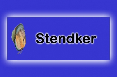 DISCOS STENDKER