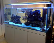 blau gran cubic 230 litros marino completo con mesa negra. Black Bedroom Furniture Sets. Home Design Ideas