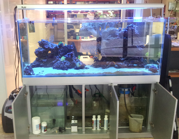 gran cubic blau 300 litros marino completo con mesa. Black Bedroom Furniture Sets. Home Design Ideas